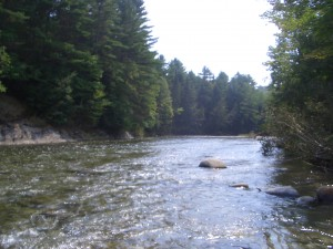 The Waits River