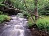 1009-pond-brook-wentworth-nh