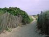 2009-walkway-to-popham-beach-maine